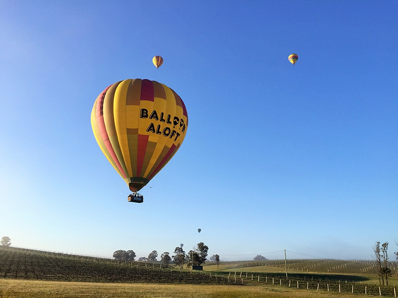 Fly over the world famous Hunter Valley vineyards a few hours drive from Sydney, historical Camden Valley or the majestic Hawkesbury region with Australia's most experienced hot air ballooning company. The ballooning adventure mets 30 minutes before sunrise and, after a cup of coffee or tea and a flight briefing, passengers are transported to the chosen launch site for the day. This can be one of over a dozen launch sites in the region, depending on the wind conditions on the morning. During your balloon flight you will enjoy views of hills, rivers, forests, vineyards, scenic townships, national parks or farmland. Share the magic of an hour long balloon flight with fellow balloonists, and then, after landing, celebrate your exciting adventure over a gourmet a la carte breakfast and champagne celebration.