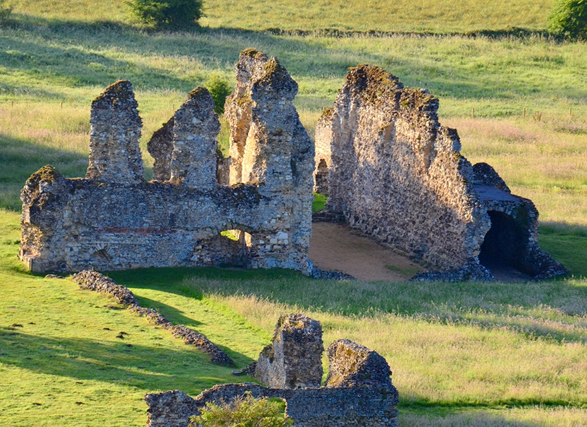 Thanks to Lucy Lazarus for this picture of Waverley Abbey Ruins