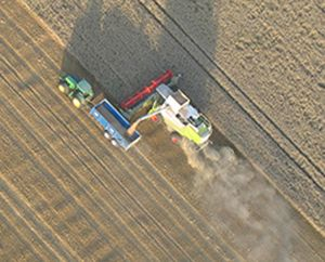 Regular summer sight on a balloon flight in Kent are the combine harvesters